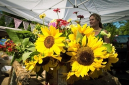 Bright, colorful flowers are a main attraction at the Mt Laurel Spring Festival.