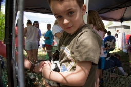 The petting zoo at the Mt Laurel Spring Festival is always a big hit with local children.