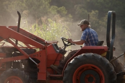 With over 75 different crops growing throughout the year, the Mt Laurel Farm hosts months of activity.